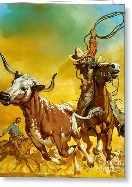 Steer Greeting Cards - Cowboy lassoing cattle  Greeting Card by Angus McBride