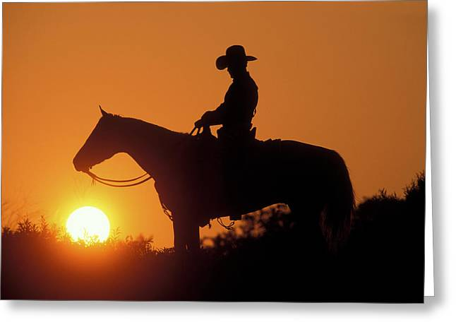 Cowboy Sunset Silhouette Greeting Card