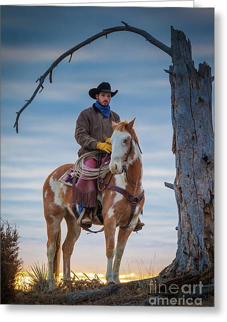 Cowboy Under Tree Greeting Card by Inge Johnsson
