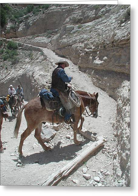 Greeting Card featuring the photograph Cowboys In The Canyon by Nancy Taylor