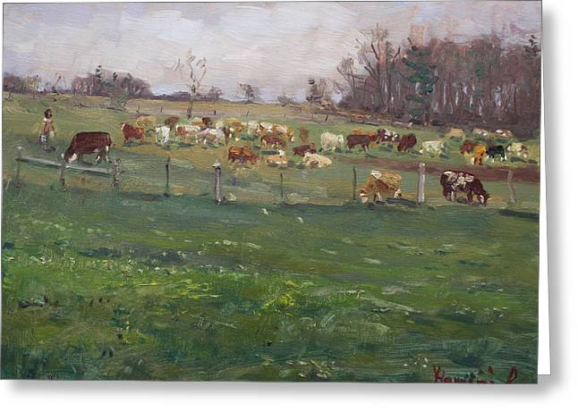 Cows In A Farm, Georgetown  Greeting Card