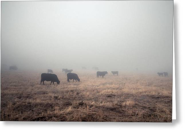 Greeting Card featuring the photograph Cows In Fog - Color by Alexander Kunz