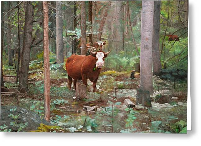 Cows In The Woods Greeting Card by Joshua Martin