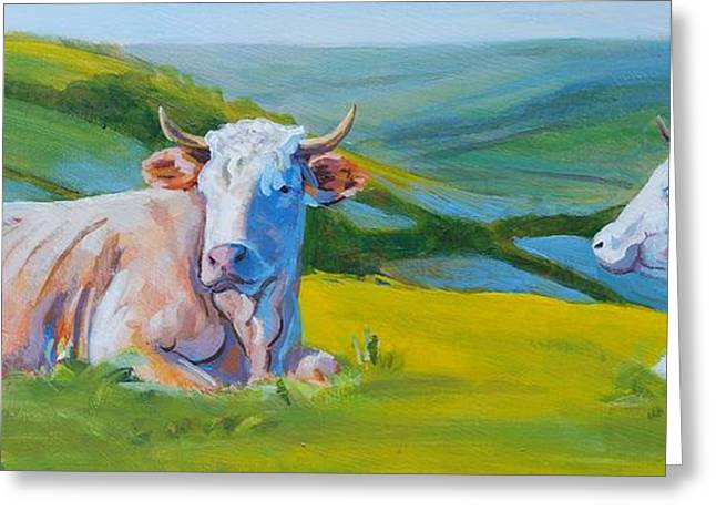 Cows Lying Down In Devon Hills Greeting Card
