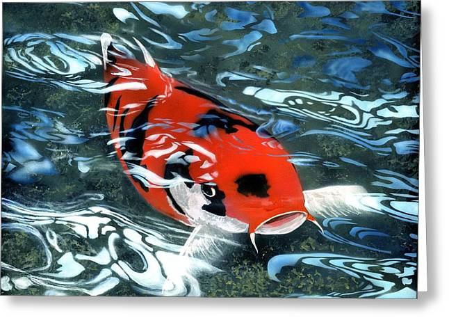 Coy Koi Greeting Card by Charles Parks