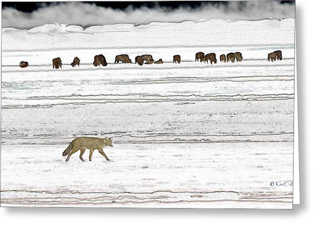 Greeting Card featuring the digital art Coyote And Bison by Kae Cheatham