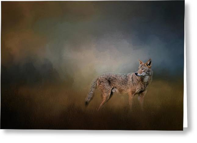 Coyote At Shiloh Greeting Card