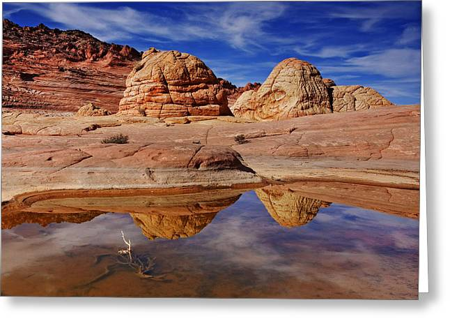 Coyote Butte Reflections Greeting Card by Mike  Dawson