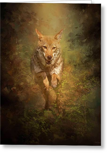 Coyote Energy Greeting Card