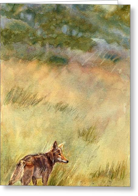 Coyote Santa Rosa Plateau Greeting Card