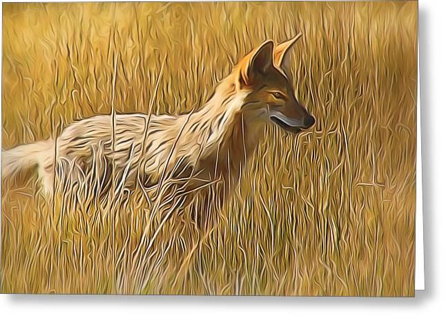 Coyote Sunshine Greeting Card