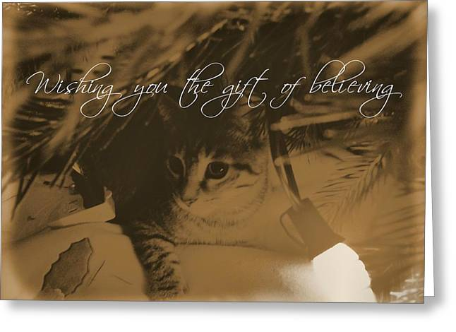 Cozy Spot Quote Greeting Card by JAMART Photography