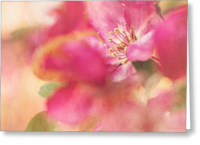 Crab Apple Blossoms II Greeting Card