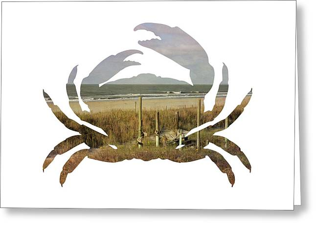 Greeting Card featuring the photograph Crab Beach by Michael Colgate