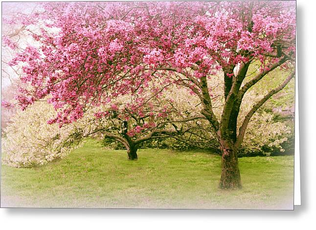 Greeting Card featuring the photograph Crabapple Confection by Jessica Jenney
