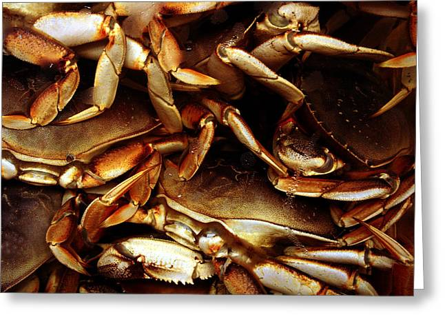 Crabs Awaiting Their Fate Greeting Card