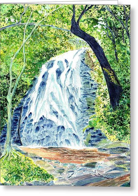 Crabtree Falls - Phantom Of The Blue Ridge Greeting Card by Joel Deutsch