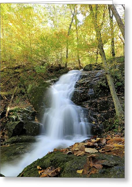 Crabtree Falls In The Fall Greeting Card