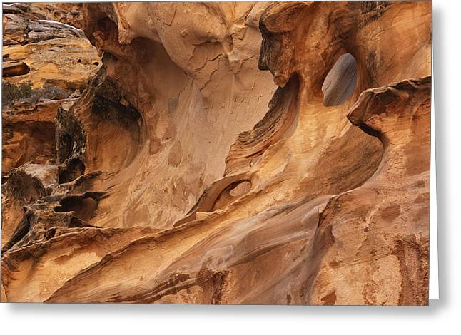 Crack Canyon Greeting Card by Leland D Howard