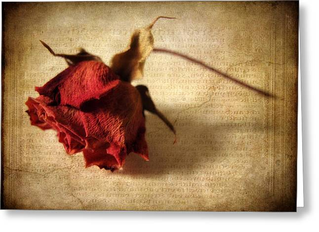 Crackling Rose Greeting Card by Jessica Jenney