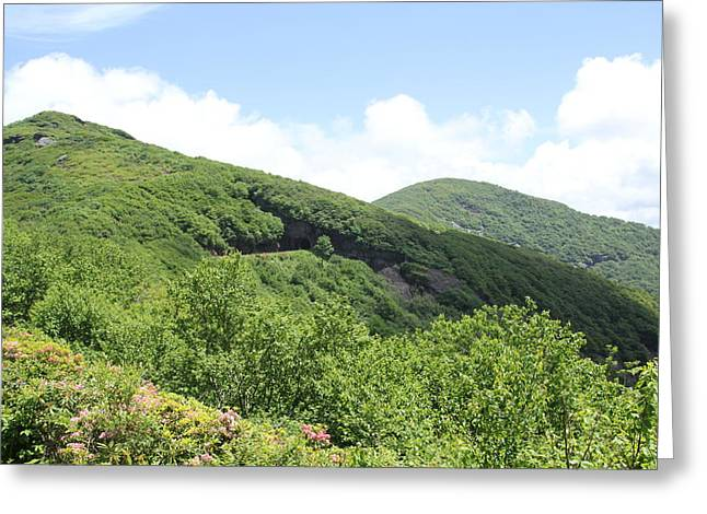 Craggy Gardens Greeting Card