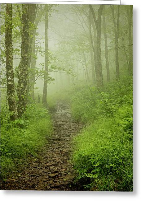 Craggy Gardens Trail Greeting Card