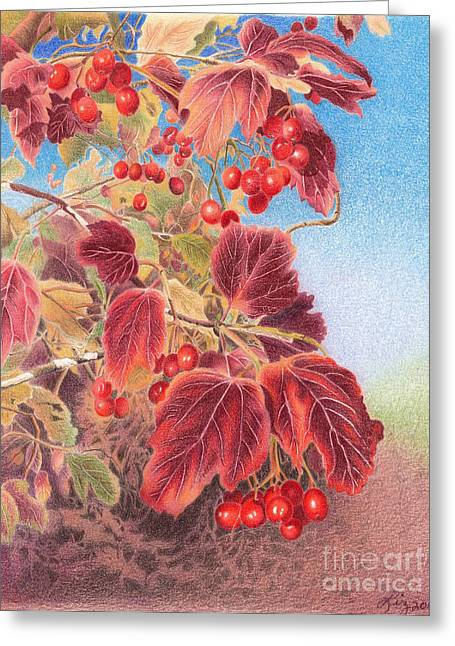 Cranberry Bush In Autumn Greeting Card