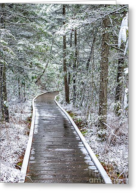 Cranberry Glades Boardwalk With Snow Greeting Card