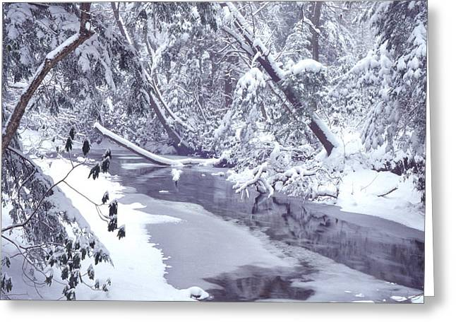 Nicholas Greeting Cards - Cranberry River Winter Heavy Snow Greeting Card by Thomas R Fletcher