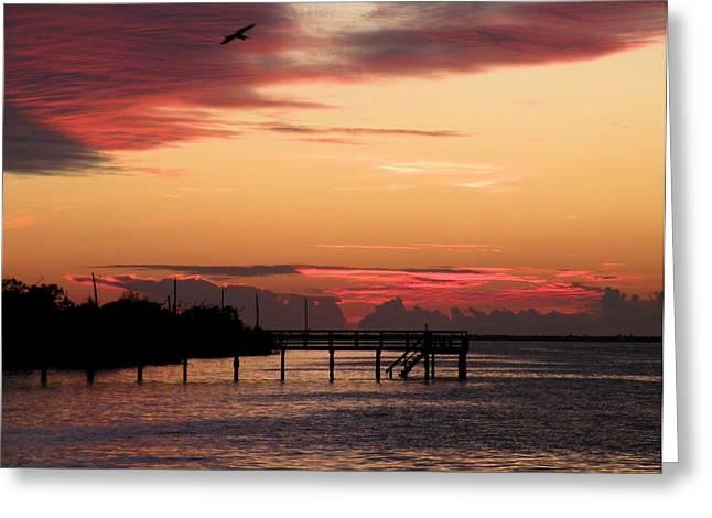 Cranberry Sunset Greeting Card by Rosalie Scanlon
