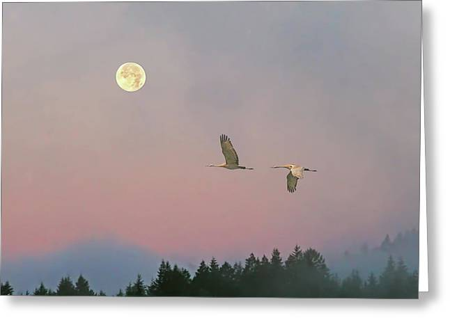 Greeting Card featuring the photograph Cranes And A Full Moon At Dawn by Peggy Collins