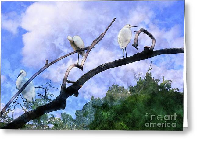 Cranes In A Tree Greeting Card by Methune Hively