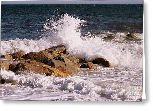 Crashing Surf On Plum Island Greeting Card by Eunice Miller