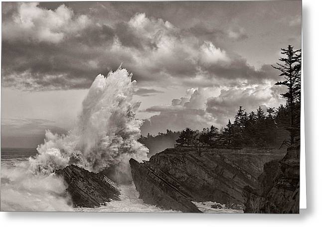 Crashing Waves At Shore Acres Greeting Card