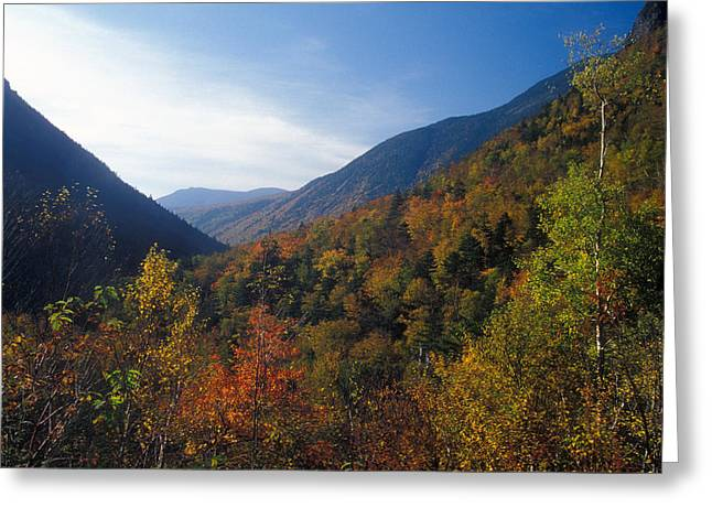 Crawford Notch In Autumn Greeting Card