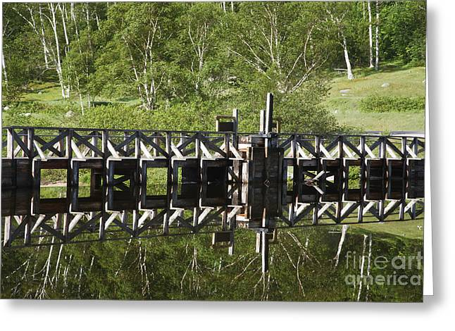 Crawford Notch State Park - Willey Pond White Mountains Nh Greeting Card by Erin Paul Donovan