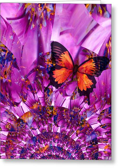 Crazy Flower Butterfly Greeting Card