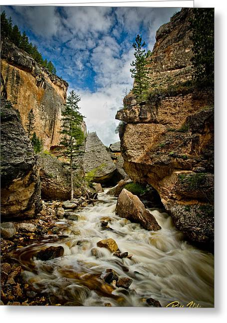 Crazy Woman Canyon Greeting Card by Rikk Flohr