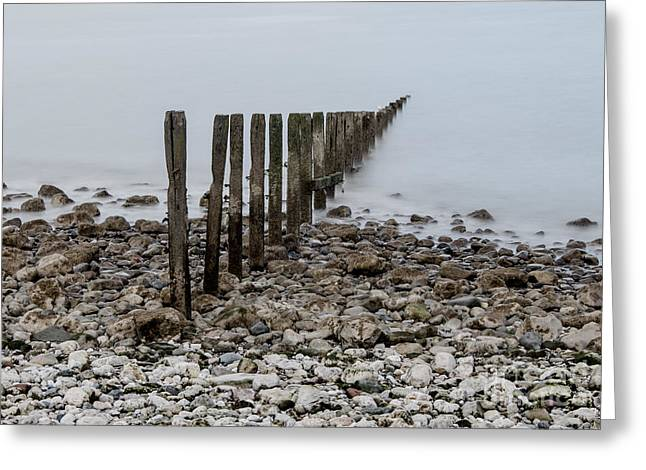 Creaky Old Groynes  Greeting Card by Chris Evans
