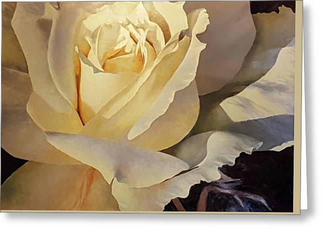 Creamy Rose Greeting Card