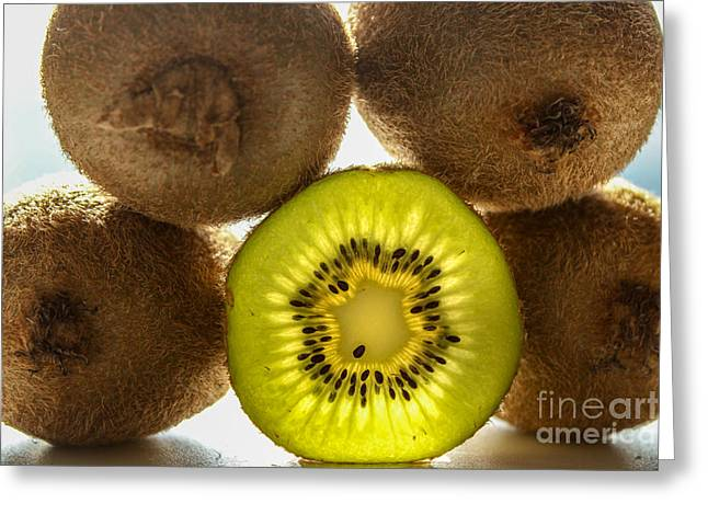 Creative Kiwi Light Greeting Card