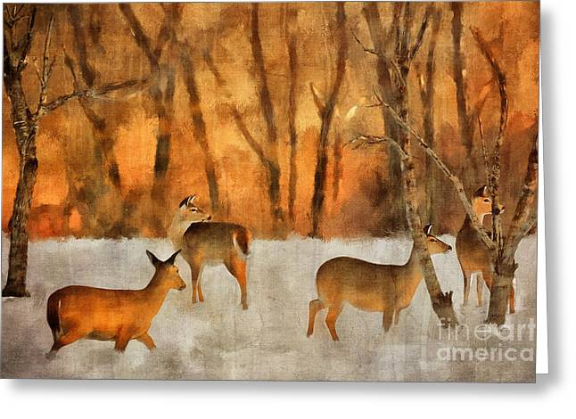 Creatures Of A Winter Sunset Greeting Card