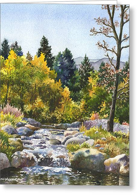 Creek At Caribou Greeting Card by Anne Gifford