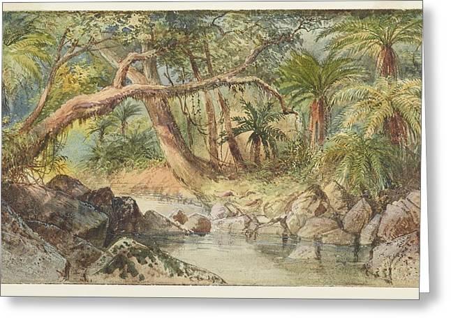 Creek At Holmes Bay, Banks Peninsula Fuschia Trees, 1866  , By Nicholas Chevalier Greeting Card