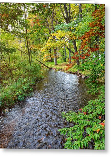 Creek Bend Greeting Card by John M Bailey