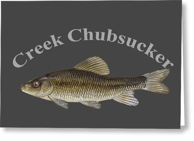 Creek Chubsucker Fish By Dehner Greeting Card by T Shirts R Us -