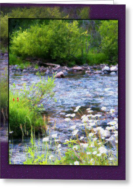 Greeting Card featuring the photograph Creek Daisys by Susan Kinney
