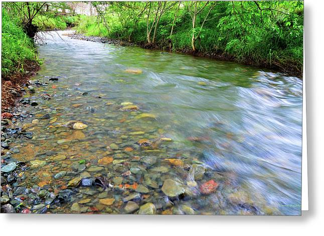 Creek Of Many Colors Greeting Card by Donna Blackhall