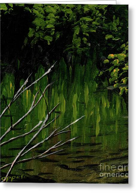 Creek Reflections Greeting Card by Robert Coppen