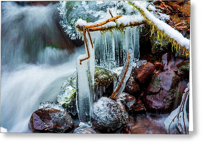 Creekside Icicles Greeting Card